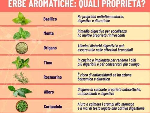 Proprietà delle erbe Aromatiche